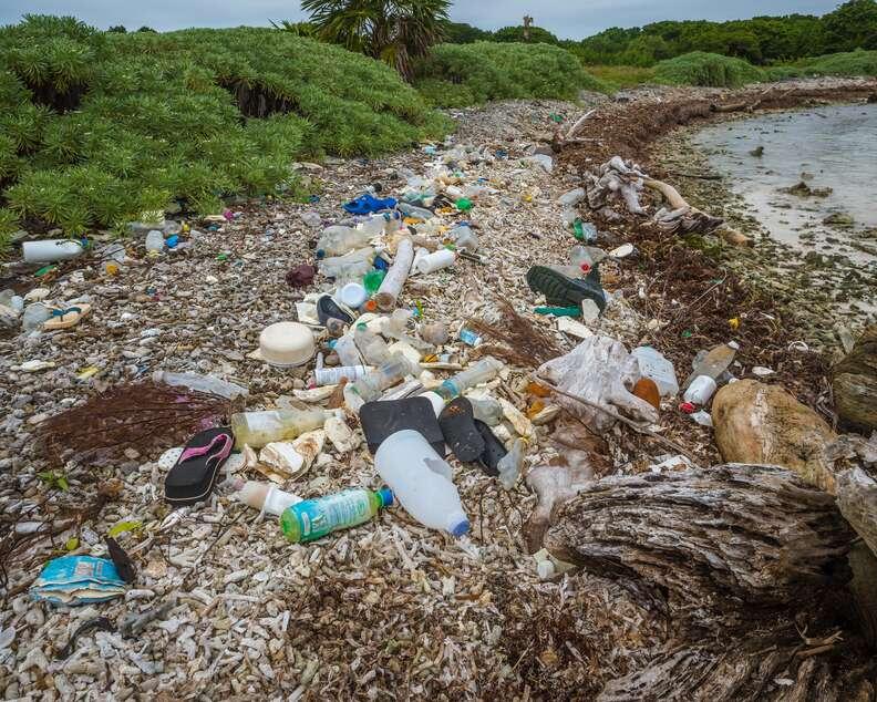 Plastic littering shore of Belize