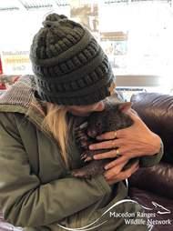 Woman cuddling baby wombat