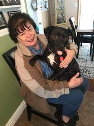 dog finds new home