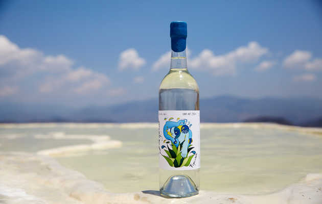 This Is Why Mezcal Is So Expensive