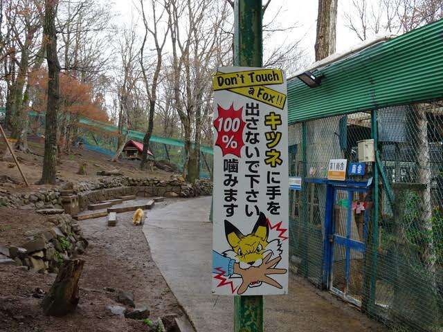 A sign warning visitors not to pet or feed foxes