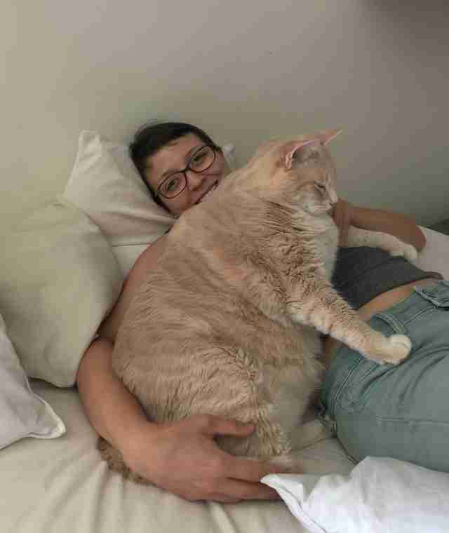 Huge Shelter Cat Finds The Perfect Family To Help Him Lose Weight
