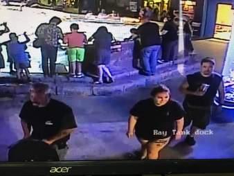 shark stole thief