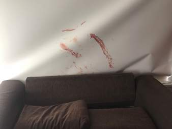 Blood smeared on wall above couch in Victoria, Australia, home
