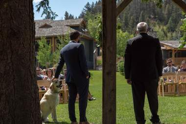 Groom standing with dog at wedding alter