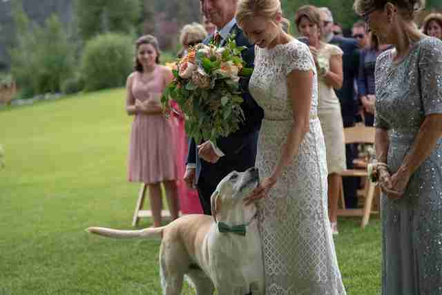 Bride petting dog before ceremony