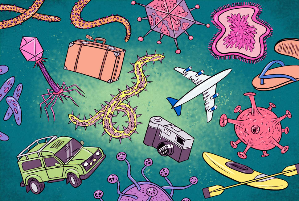 Common Travel Diseases: What It's Like to Get Malaria, Zika & More