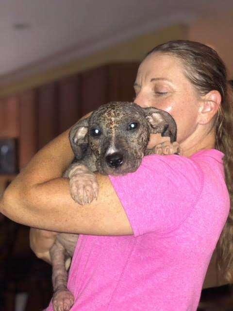 Woman cuddling puppy with mange