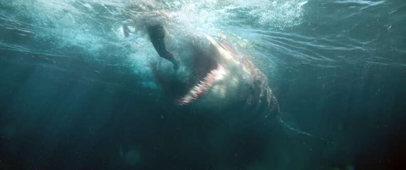 The Meg movie shark