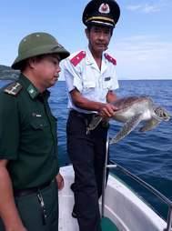 Men saving sea turtle who had been taken captive in Vietnam