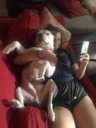 Dog cuddling with woman on couch