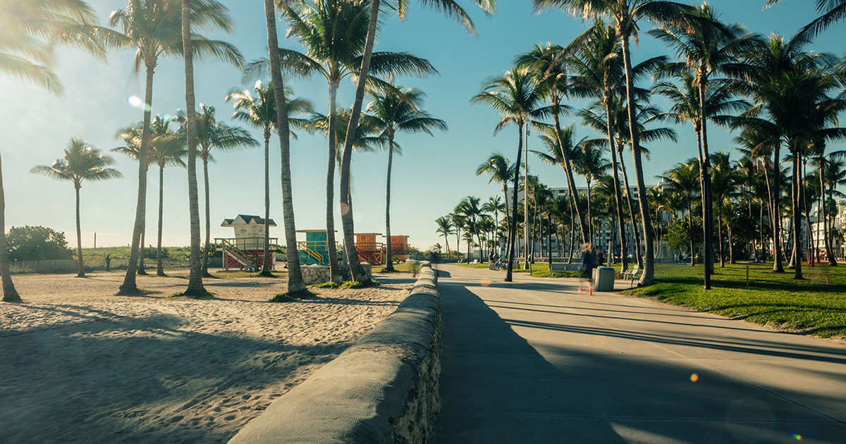 How to Enjoy Miami Like A Local & Hit the Must-Try Spots