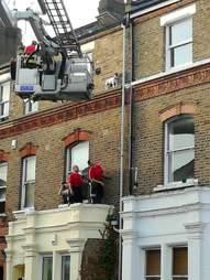 dog rescue window ledge london