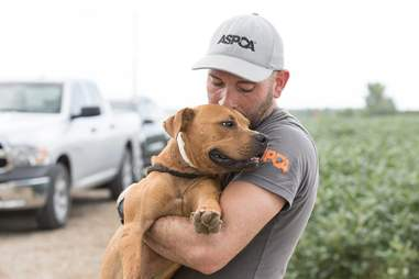 Rescuer holding pit bull in his arms