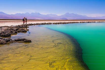Laguna Cejar, Atacama Desert, North Chile