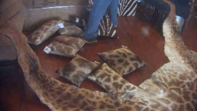 Giraffe rugs and pillows