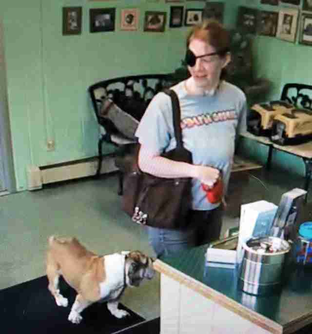 Woman leaves sick English Bulldog at groomers