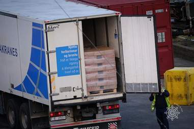 Boxes of whale meat in the back of a truck