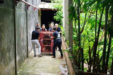 Rescuers carrying crate containing bear