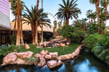 The Flamingo, Las Vegas