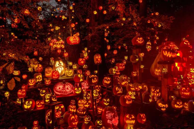 The Historic Irvington Halloween Festival jack-o-lanterns 2016
