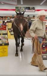 horse shopping oklahoma