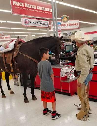 horse store oklahoma