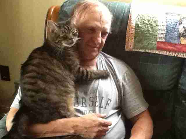 cat loves cuddling with dad