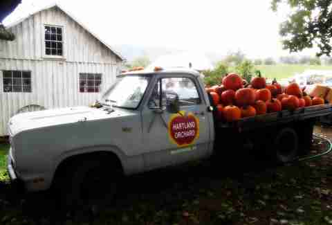 Hartland Orchard truck filled with pumpkins