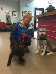 Oreo the abandoned senior dog with his adoptive family