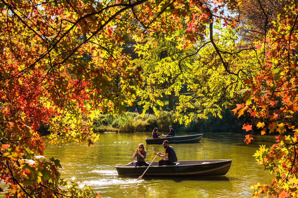 fall boat ride in central park nyc