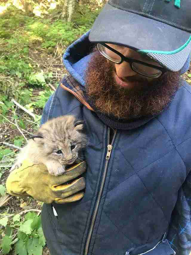 Tiny Kitten Found Alone In Woods Wasn't What He Seemed