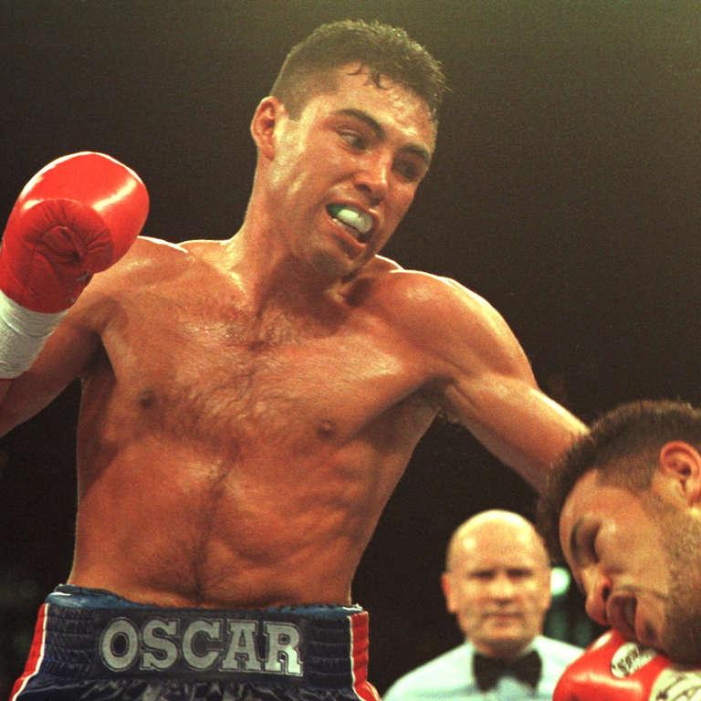 Boxer Hoya