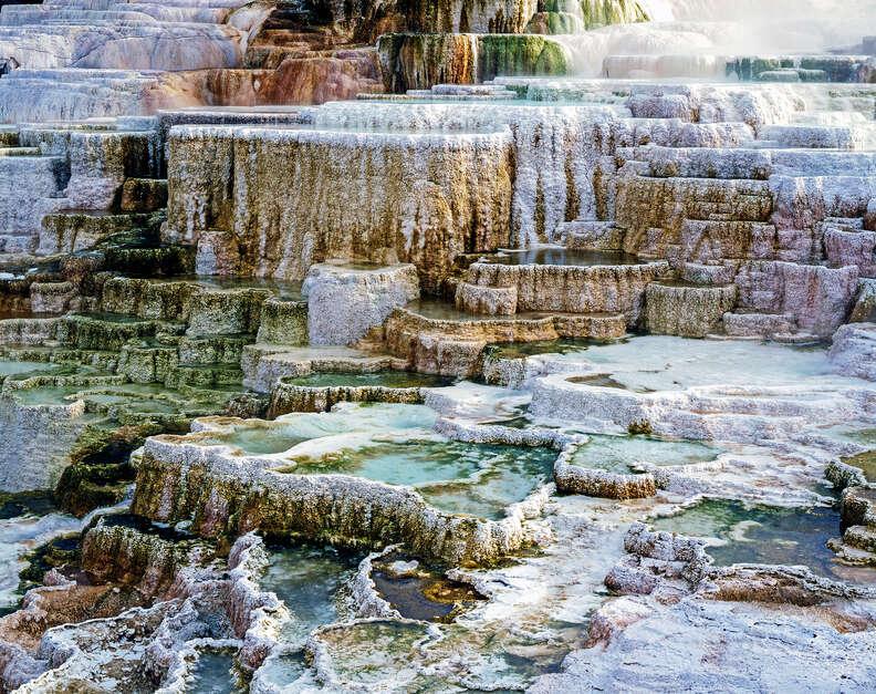 Minerva Terrace, Mammoth Hot Springs