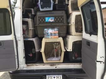 Transport van breaks down in South Carolina