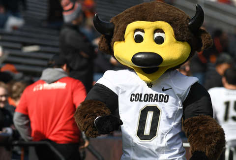 Colorado Mascot Shoots Self With T Shirt Gun And Gets Carted Off