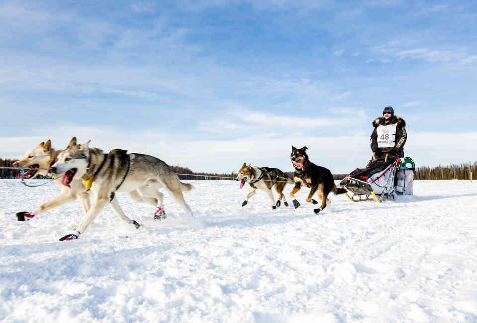 Best Dog Sledding in Alaska: A Dog Sledding Guide in Juneau