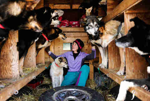 Musher Zoya DeNure pets her team of dogs before the Iditarod.