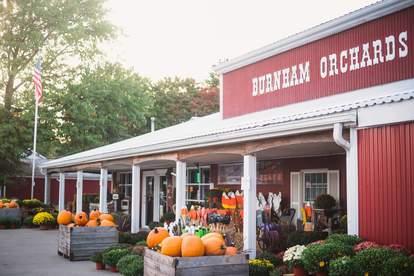 Burnham Orchards