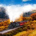 a steam train rolling along through fall scenery