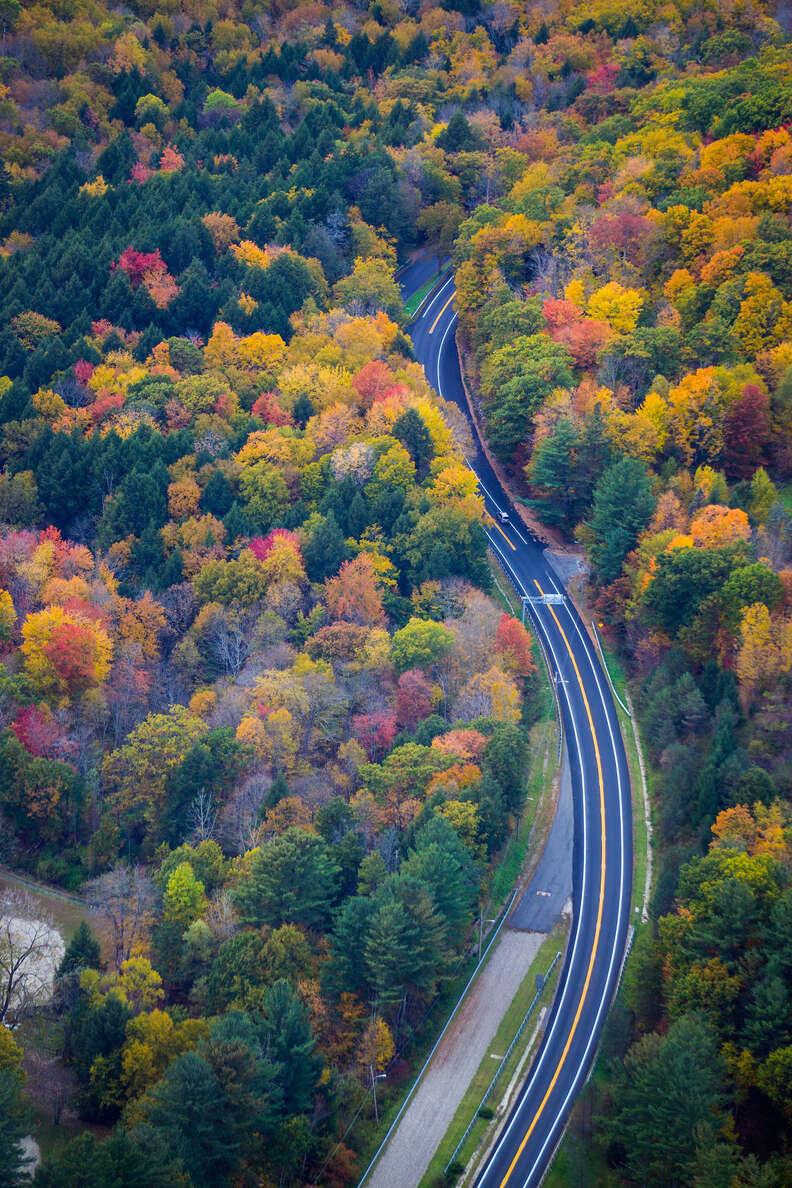 New England foliage; aerial view