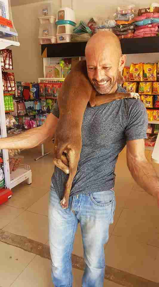 Dog latched onto man