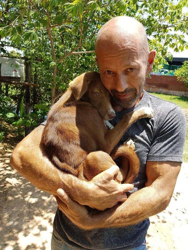 Puppy cuddling up to man