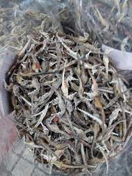 Dried seahorses inside plastic bag
