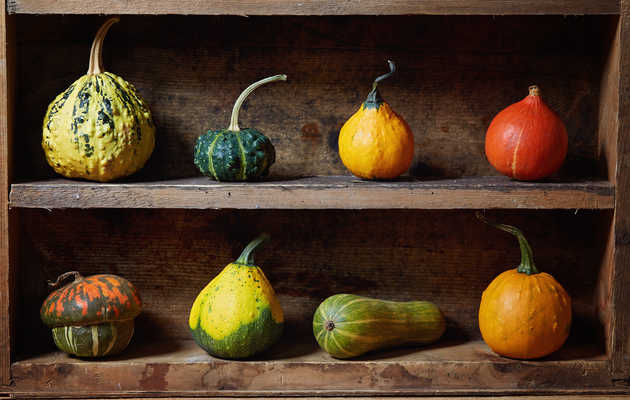 Can You Eat Your Seasonal, Decorative Gourds?