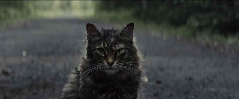 'Pet Sematary' Looks Creepier Than Ever in The New Trailer for the Stephen King Remake