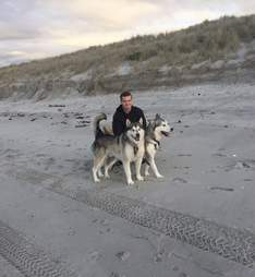Dog terrified of everyone
