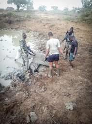Rescuers helping elephant