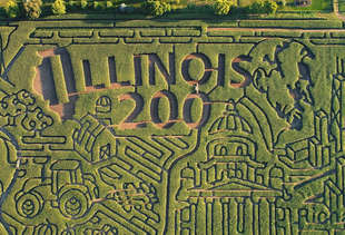 This Corn Maze Is the Size of 21 Football Fields