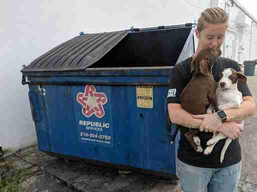 Puppies found in a dumpster near San Antonio Pets Alive! clinic